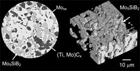 2D scanning electron microscope image and 3D image from the same perspective of the Mo5SiB2 layer only of an MoSiBTiC alloy we are developing as a super-high temperature material for use in next-generation jet engines